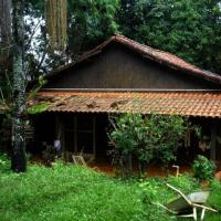 Casa Principal em Ipê ID: 5203