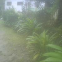 Vista da entrada ID: 20025