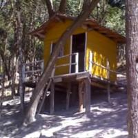 Casa de Boneca  ID: 5689