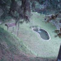 Vista da parte de cima da propriedade para posso com chafariz e peixes ID: 18399