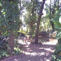 Bosque ID: 18620
